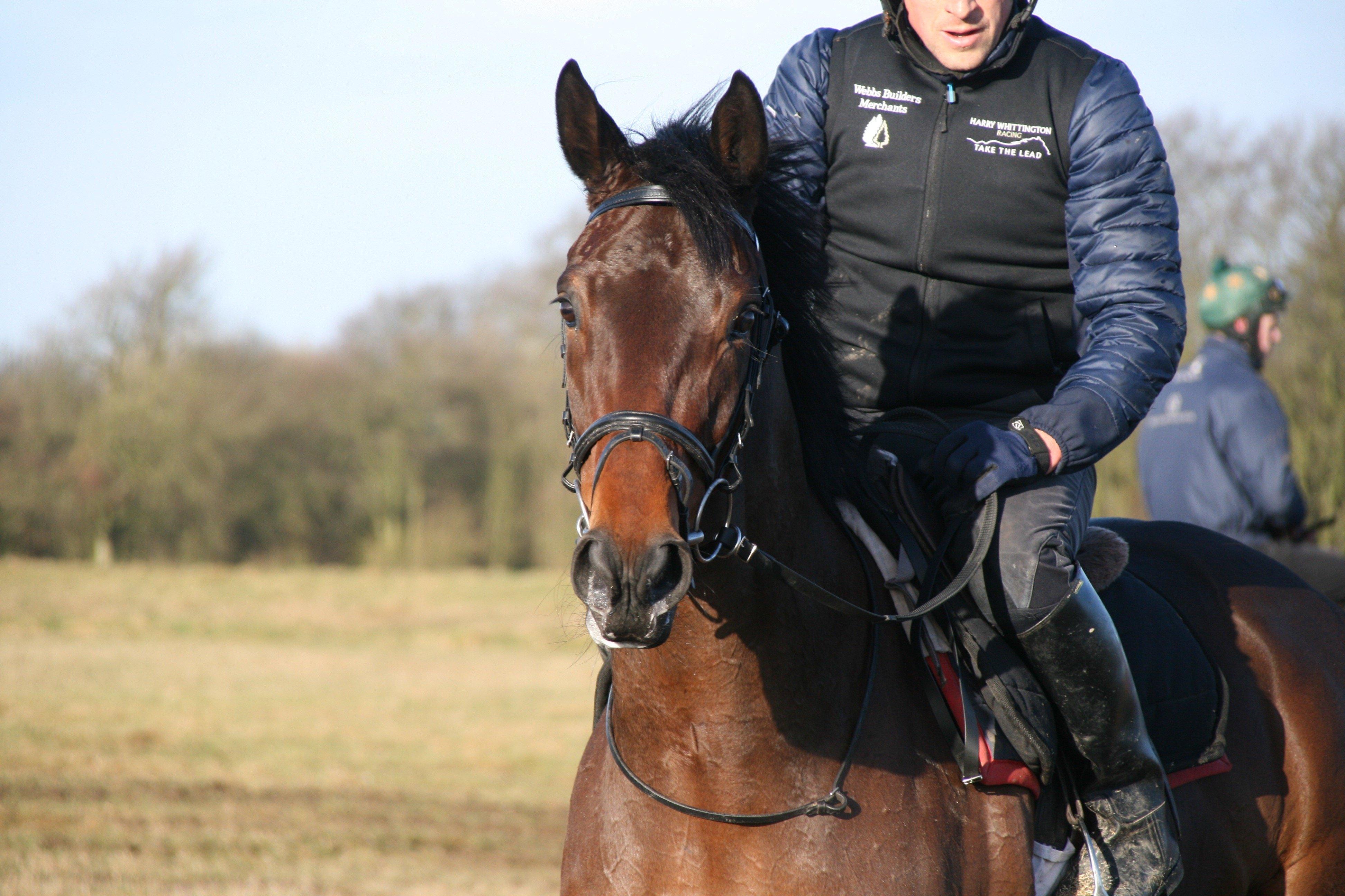 Harry Whittington Racing